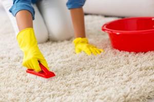 čištění a tepování koberců a čalounění
