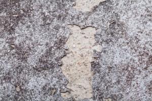 Likvidace, sanace, odstranění plísní